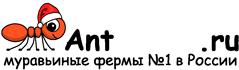 Муравьиные фермы AntFarms.ru - Вологда